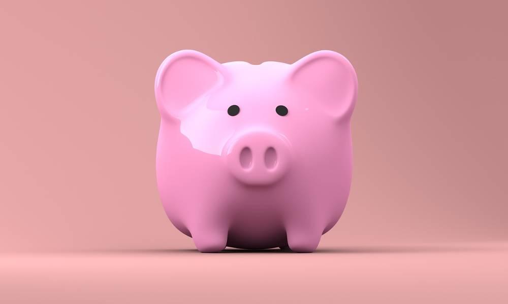 Ihr Sparschwein für Ihre Vergütung als Beratungsstellenleiter